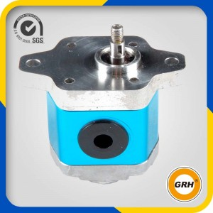 Hydraulic Gear Motor-Group 1 gear motor